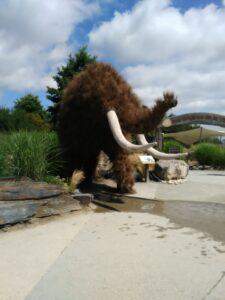 Terra Botanica mammouth